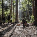 Kawansh: «Bosque escuela» (2018)